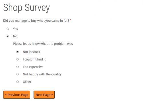 Surveys slideshow image 5